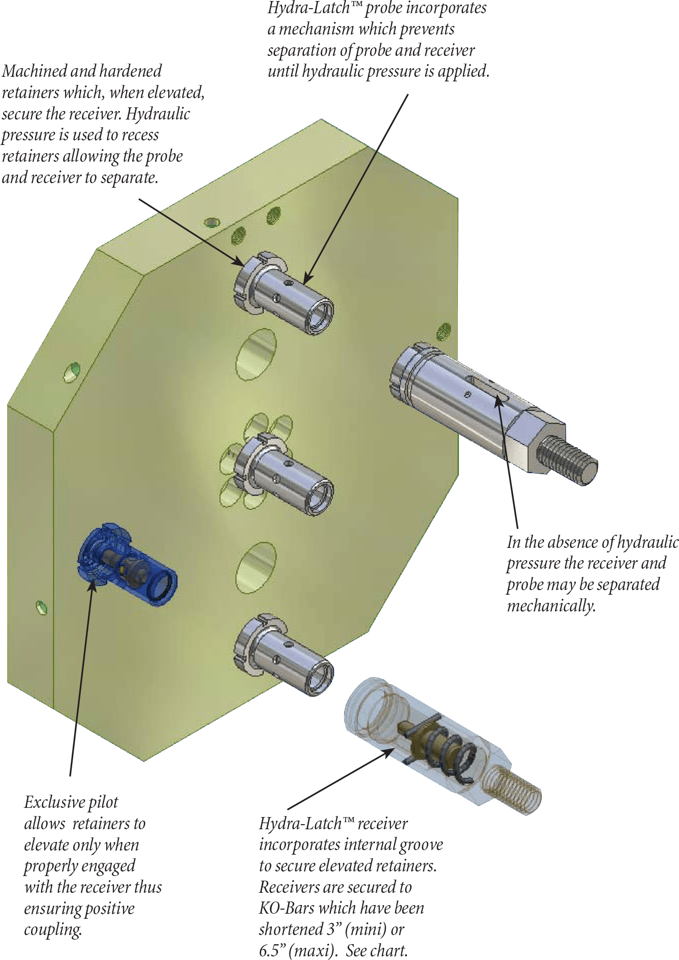hydra-latch features